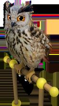 https://upportal.wavecdn.net/misc/images/eurasian_eagle_owl_123x220.png