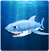 My Free Zoo Grand Requin Blanc Ou Homme Requin Upjers Com